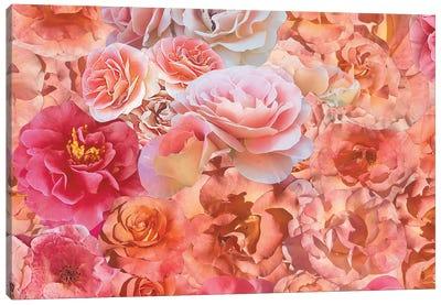 Fresh Canvas Art Print