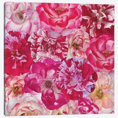 Hearts Are Wild Canvas Print #KKM45} by Kat Kleinman Art Print
