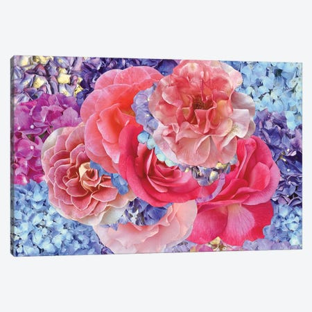 Hydrangeas with Roses Canvas Print #KKM46} by Kat Kleinman Art Print