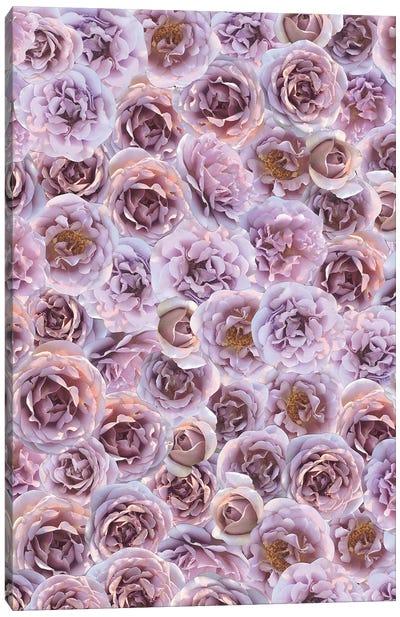 Pink Canvas Art Print