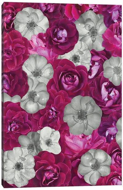 Raspberry Truffle Canvas Art Print