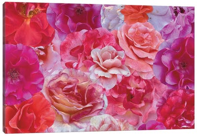 Shades of Summer Canvas Art Print