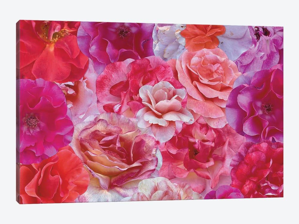 Shades of Summer by Kat Kleinman 1-piece Canvas Artwork