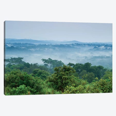 Tropical Rainforest, Kibale National Park, Western Uganda Canvas Print #KKT2} by Sebastian Kennerknecht Canvas Art