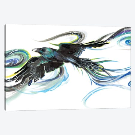 Rainbow Raven Canvas Print #KLI109} by Katy Lipscomb Canvas Artwork