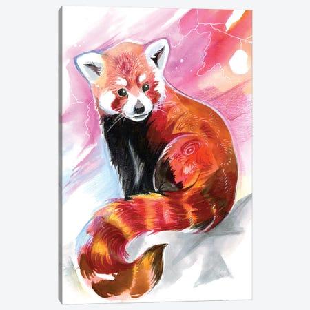 Red Panda Canvas Print #KLI116} by Katy Lipscomb Canvas Wall Art
