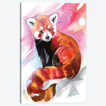 Red Panda Canvas Print #KLI116} by Katy Lipscomb Canvas Wall Art