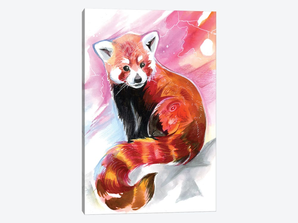 Red Panda by Katy Lipscomb 1-piece Canvas Print