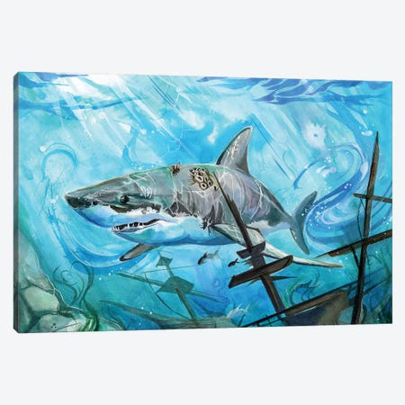 Shark Canvas Print #KLI128} by Katy Lipscomb Canvas Wall Art