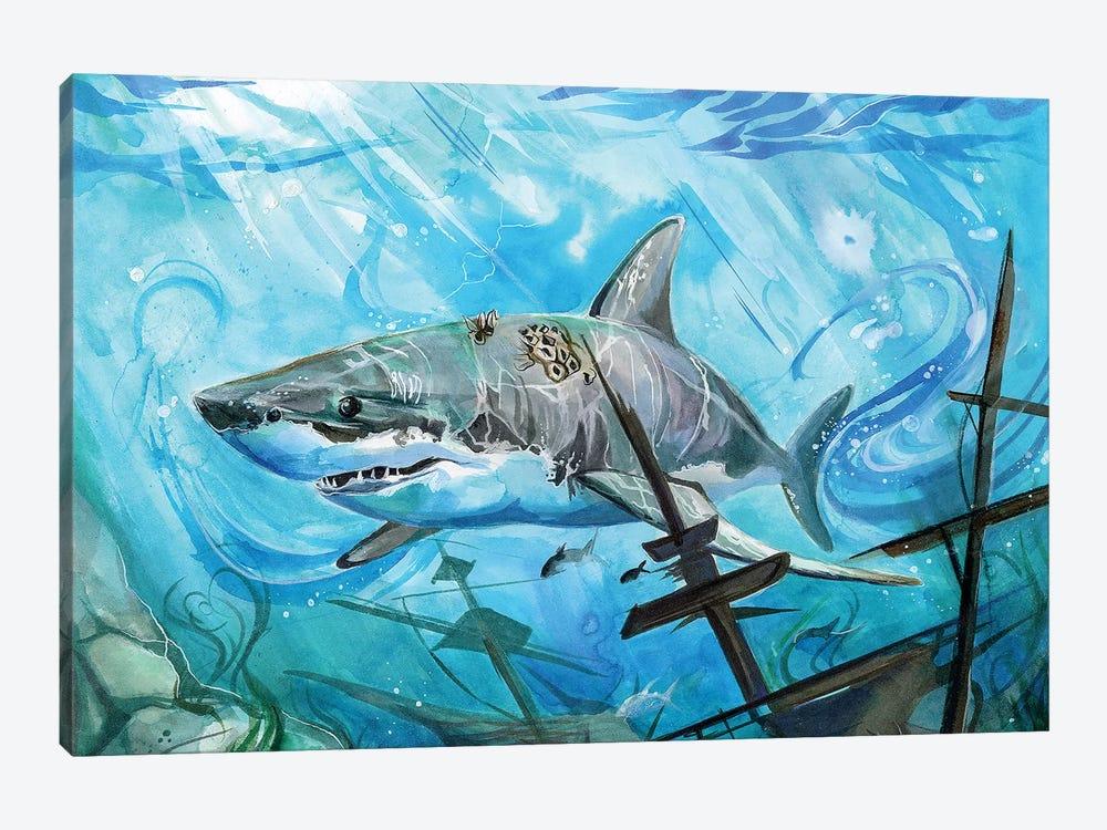Shark by Katy Lipscomb 1-piece Canvas Wall Art