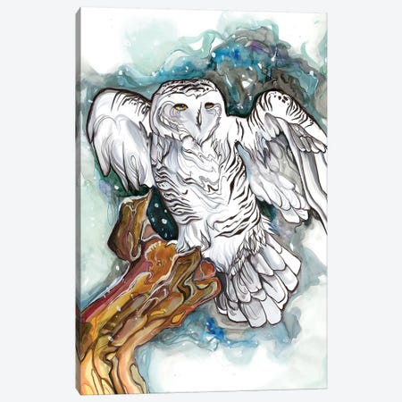 Snowy Owl Canvas Print #KLI135} by Katy Lipscomb Canvas Art