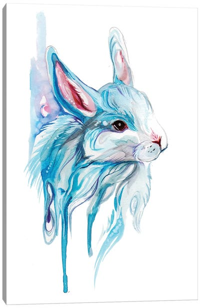 Winter Bunny Canvas Art Print