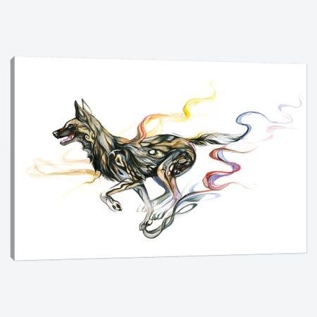 African Wild Dog Canvas Print #KLI1} by Katy Lipscomb Canvas Art Print
