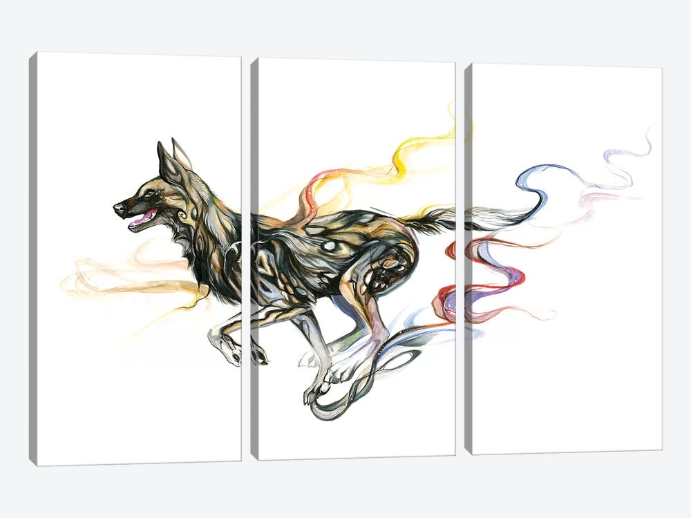 African Wild Dog by Katy Lipscomb 3-piece Canvas Wall Art