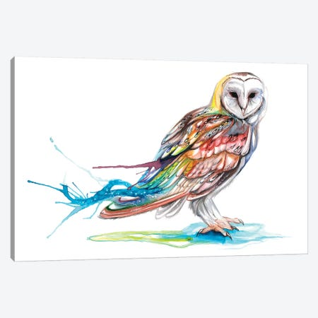 Barn Owl Canvas Print #KLI4} by Katy Lipscomb Canvas Wall Art