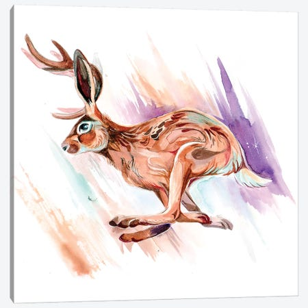 Jackalope Canvas Print #KLI68} by Katy Lipscomb Canvas Art Print
