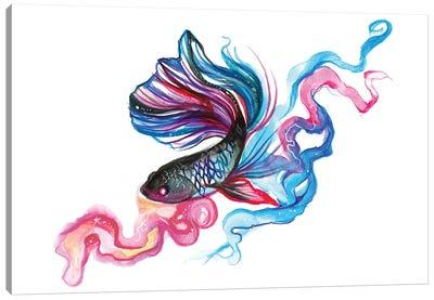 Betta Fish Canvas Art Print