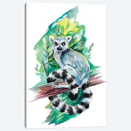 Lemur Canvas Print #KLI74} by Katy Lipscomb Canvas Print