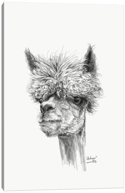 Andrew Canvas Art Print