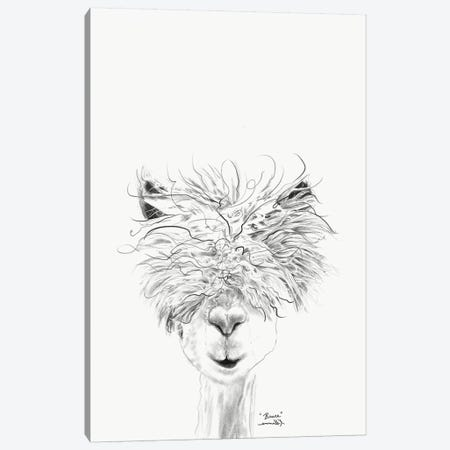 Bruce Canvas Print #KLL21} by K Llamas Fine Art Canvas Art