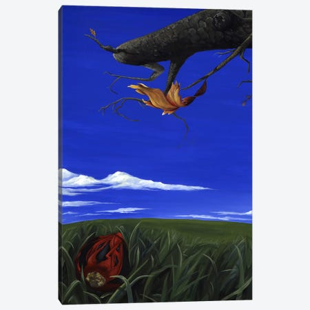 CT Book Canvas Print #KLL28} by Kristin Llamas Canvas Art