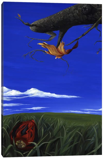 CT Book Canvas Art Print