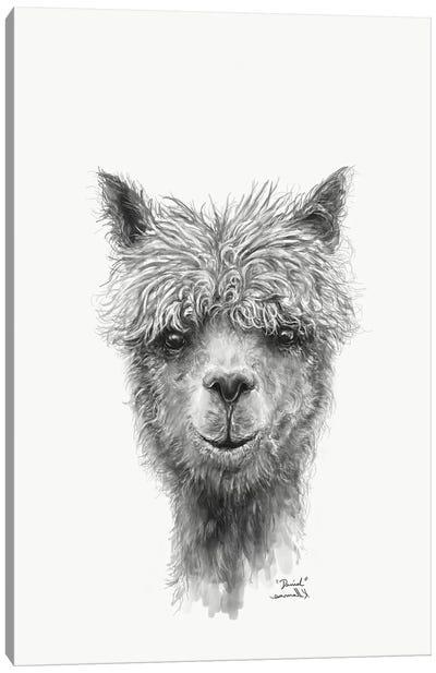 Daniel Canvas Art Print