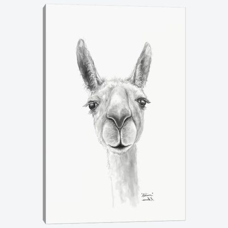 Addison Canvas Print #KLL2} by K Llamas Fine Art Canvas Art