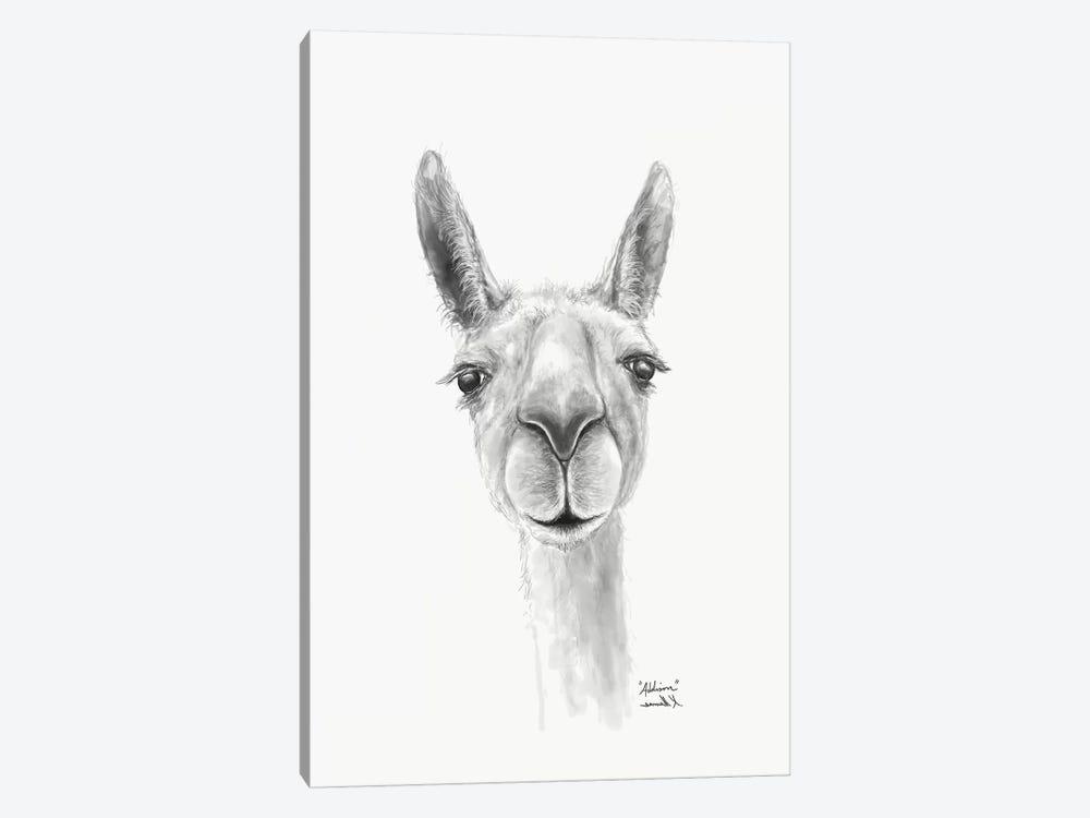Addison by Kristin Llamas 1-piece Canvas Art
