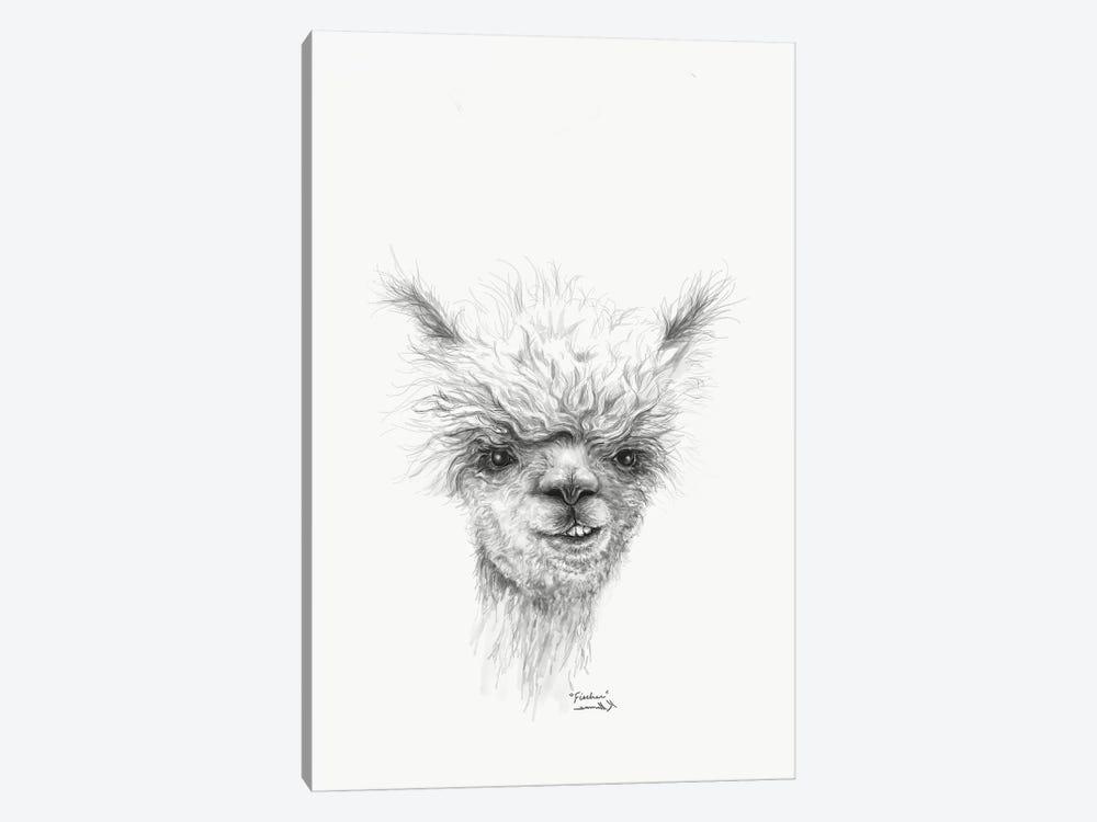 Fischer by Kristin Llamas 1-piece Canvas Art Print