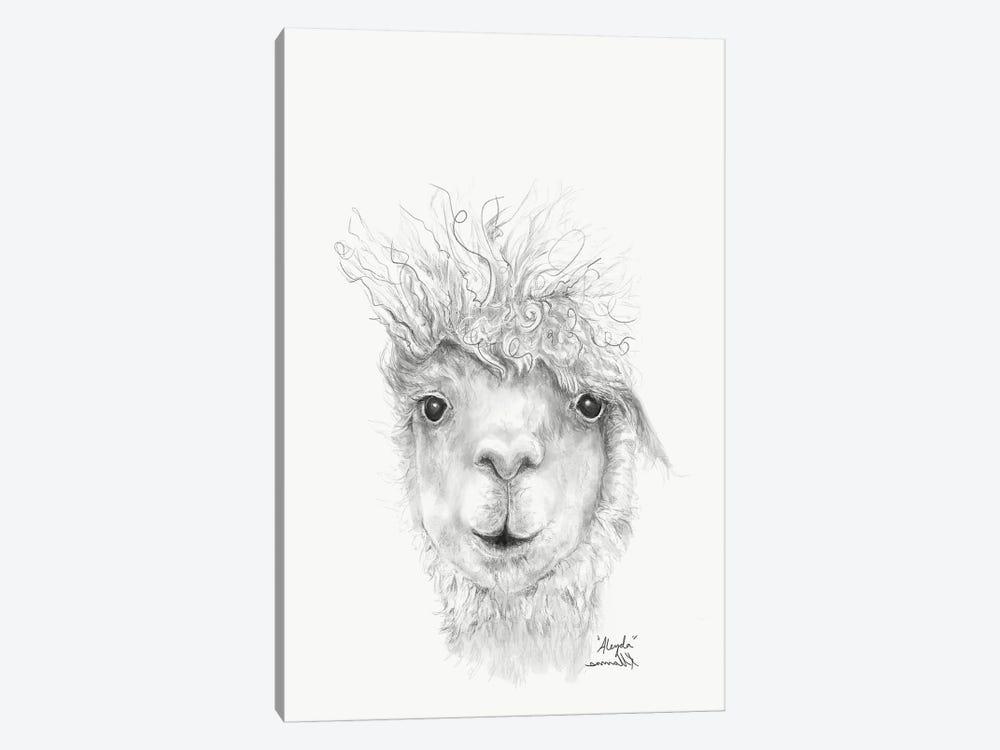 Aleyda by Kristin Llamas 1-piece Canvas Print