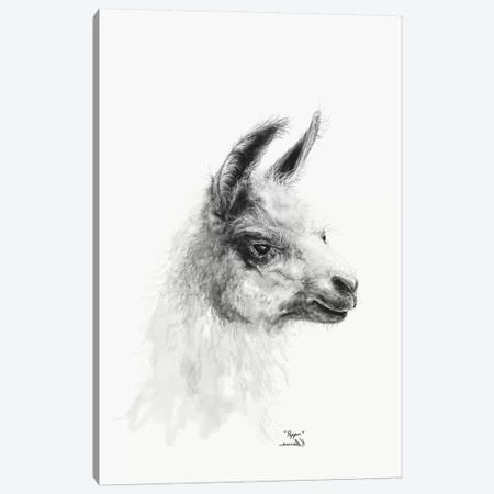Pepper Canvas Print #KLL85} by K Llamas Fine Art Canvas Art Print