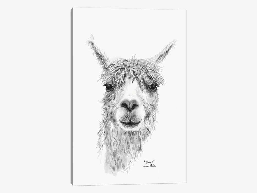 Rachel by K Llamas Fine Art 1-piece Canvas Print
