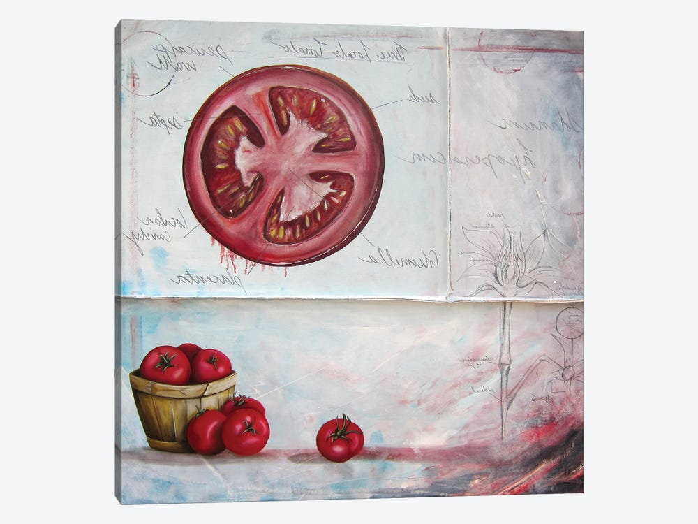 S L Tomato by Kristin Llamas 1-piece Canvas Print