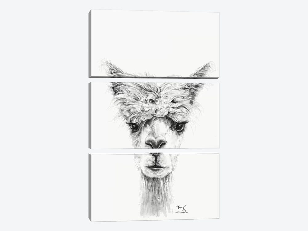Tracy by Kristin Llamas 3-piece Canvas Print