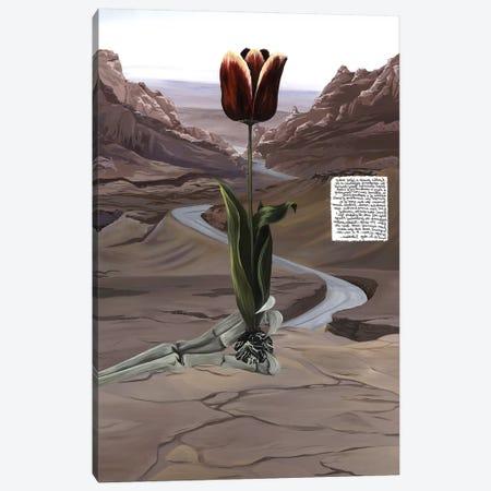 UT Book 3-Piece Canvas #KLL99} by Kristin Llamas Canvas Print