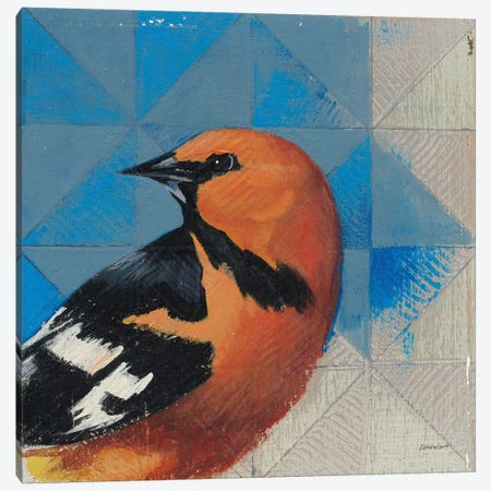 Oriole Canvas Print #KLV11} by Kathrine Lovell Art Print