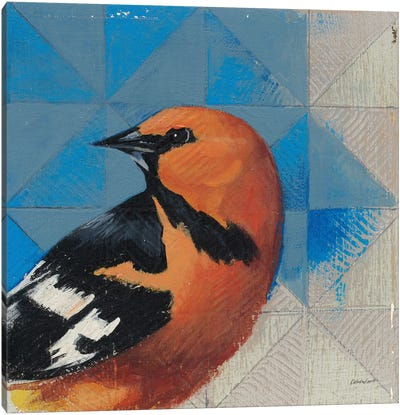 Oriole Canvas Art Print