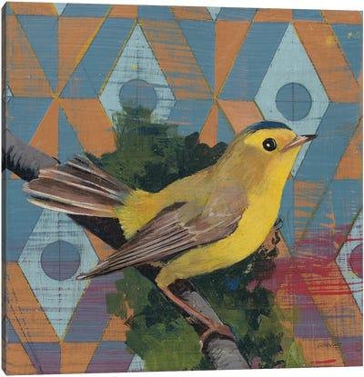 Wilsons Warbler Canvas Art Print