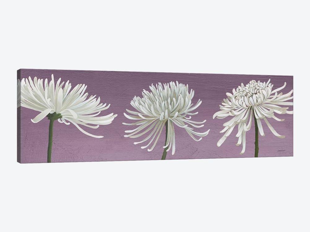 Morning Chrysanthemums V Lavender by Kathrine Lovell 1-piece Art Print
