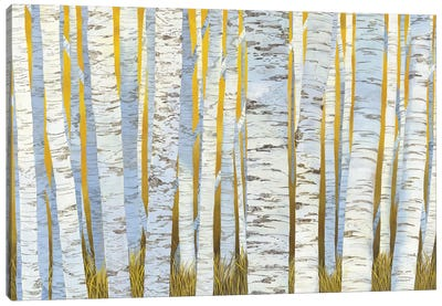 Aspen Grove Canvas Art Print