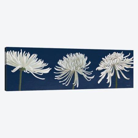Morning Chrysanthemums V Dark Blue Canvas Print #KLV2} by Kathrine Lovell Canvas Art Print