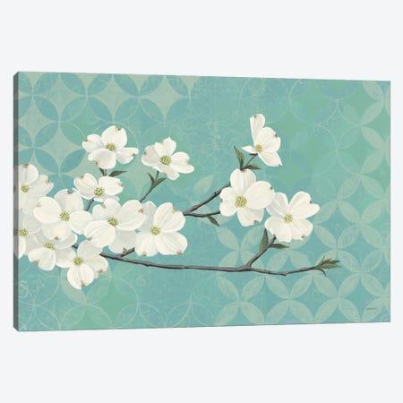 Dogwood Blossoms Canvas Print #KLV30} by Kathrine Lovell Canvas Print