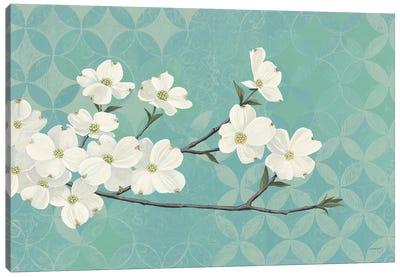 Dogwood Blossoms Canvas Art Print