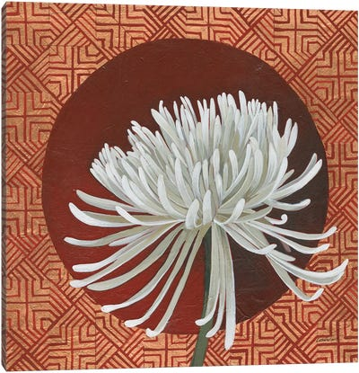 Morning Chrysanthemum III Canvas Art Print