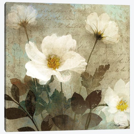 Anemone I Canvas Print #KMA11} by Keith Mallett Canvas Print