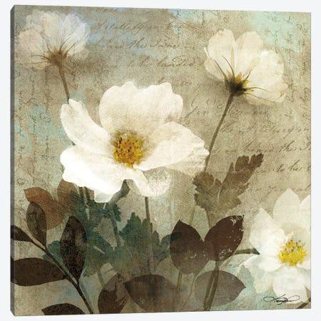 Anemone I Canvas Print #KMA11} by Keith Mallett Canvas Print