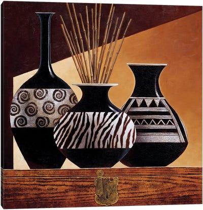 Patterns In Ebony I Canvas Art Print