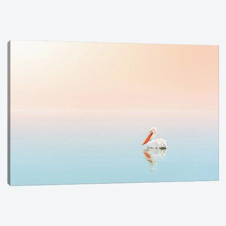 Pelican In The Ocean Canvas Print #KMD102} by Karen Mandau Canvas Print