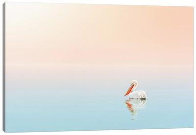 Pelican In The Ocean Canvas Art Print